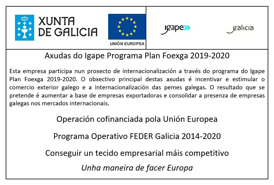 1Axudas-do-Igape-Programa-Plan-Foexga-2019-2020